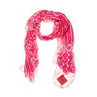 raspberry-641029_37